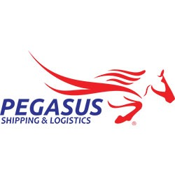 PEGASUS SHIPPING AND INVESTMENT COMPANY LIMITED