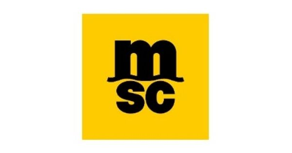 MSC (Mediterranean Shipping Company) - The second largest container shipping line in the world
