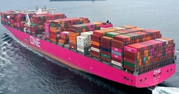 Bồi thường bảo hiểm từ vụ sập container trên tàu ONE Apus lên tới 50 triệu USD