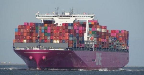 Dịch vụ vận chuyển FP2 của hãng tàu ONE bị sập đỗ container 2 lần trong một tháng
