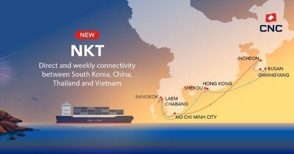 cnc-nkt-service