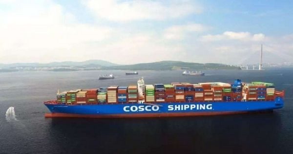 cosco shipping container lines