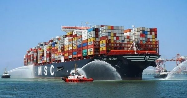 hang-tau-MSC-container-line