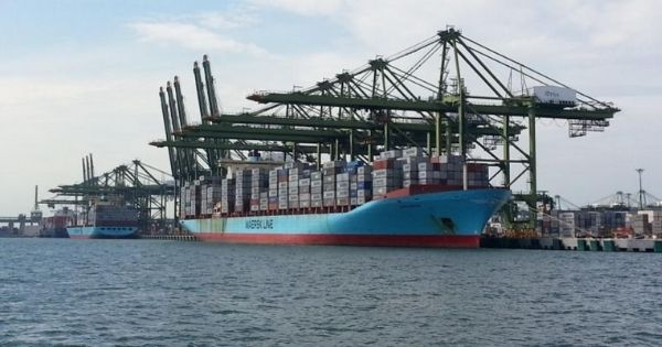 hang-tau-container-Maersk-line
