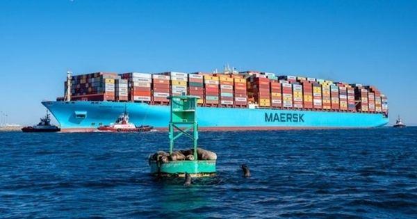 tau-Maersk-Essen-hang-tau-Maersk-Line